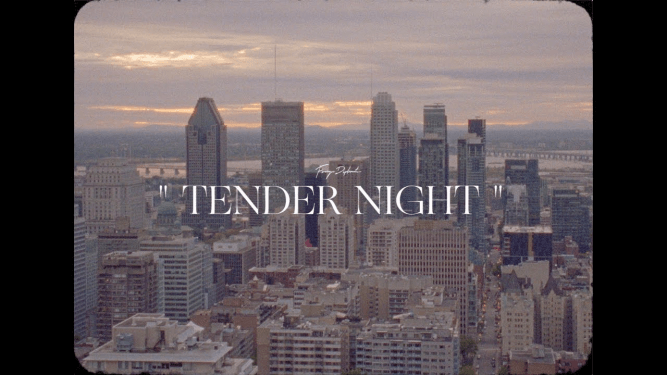 Foreign Diplomats - Tender Night